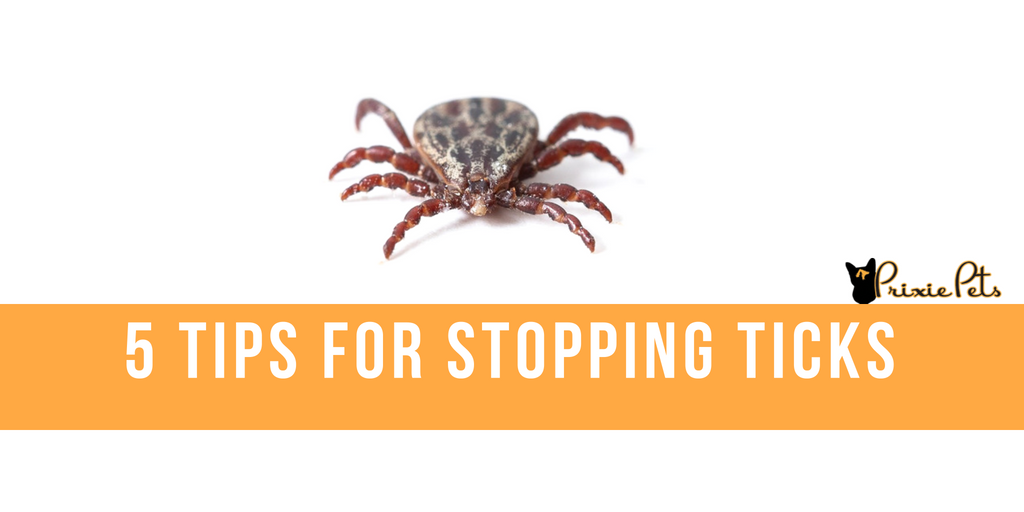 5 Tips for stopping ticks