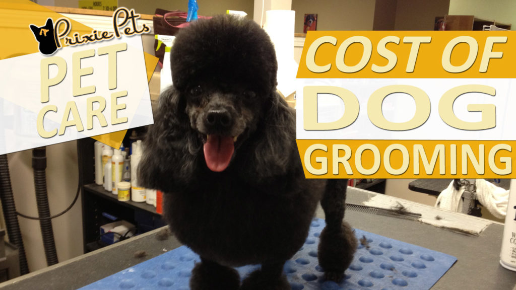 Dog Grooming Price Estimates