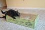 Cats Love Scratch Lounge