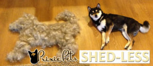 Make Your Dog ShedLESS
