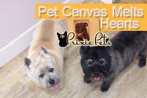 Pet Canvas Gift Melts Hearts
