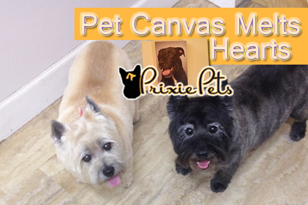 Pet Canvas Gift Melts Hearts