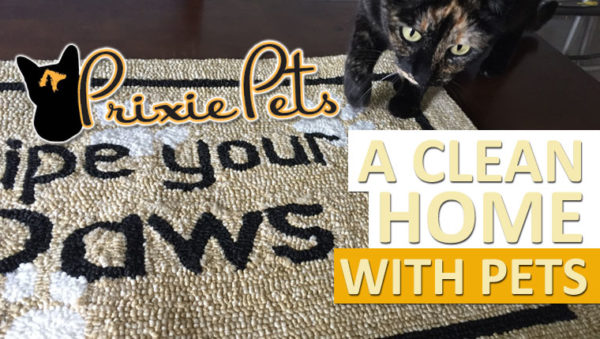 Clean Home Pets