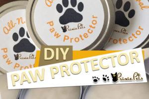 Dog Paw Protector Wax