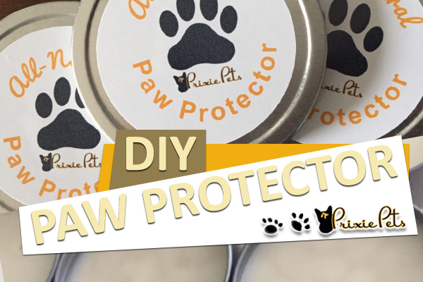 DIY All-Natural Paw Protector Wax