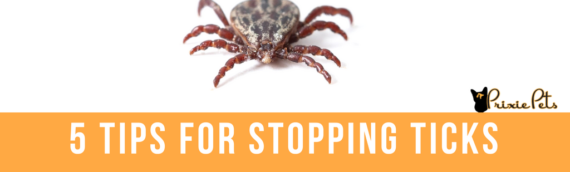Five Tips for Stopping Ticks