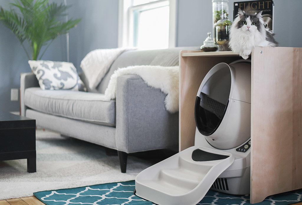 Litter Robot in Home