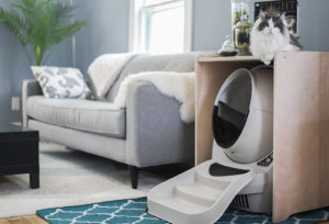 Litter Robot in Home