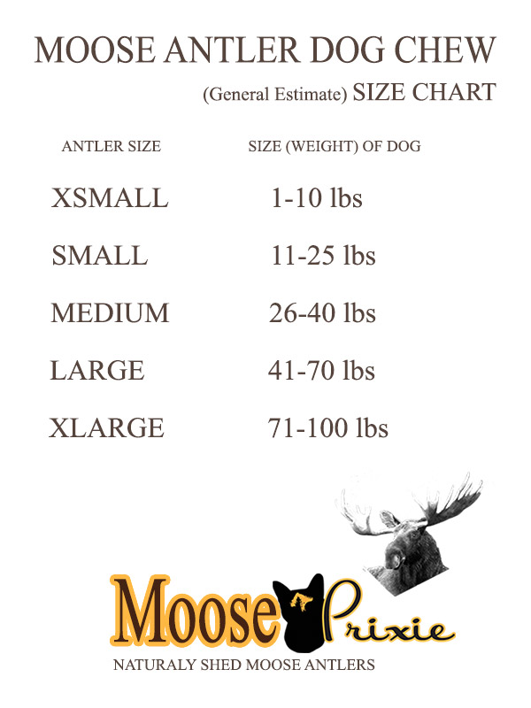 Moose Antler Dog Chew Size Chart