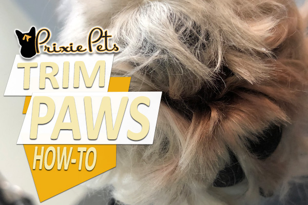 Trim Hairy Dog Pads