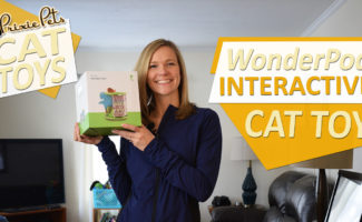 Pet Geek Wonder Pod Cat Toy Review