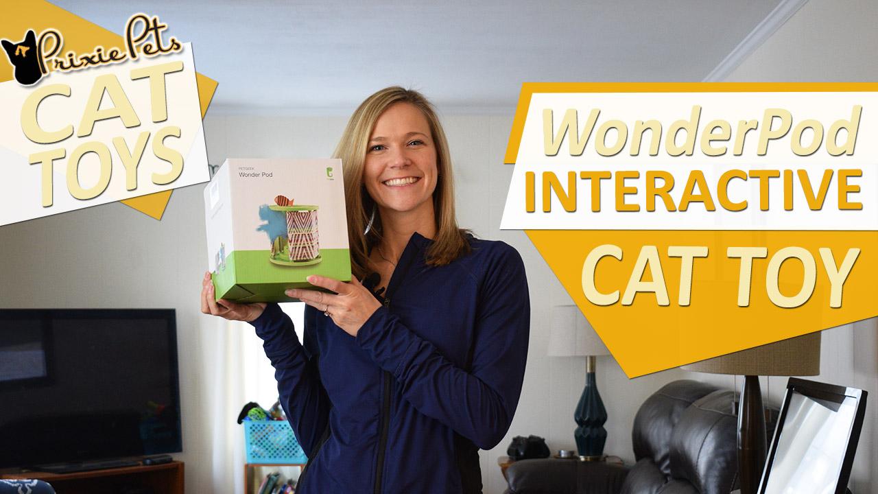 Pet Geek Wonder Pod Cat Toy Review