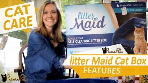 Litter Maid Automated Cat Box